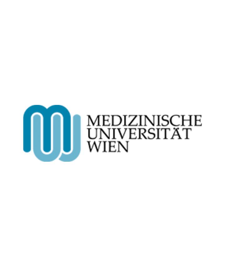 MedUni Case Study Big