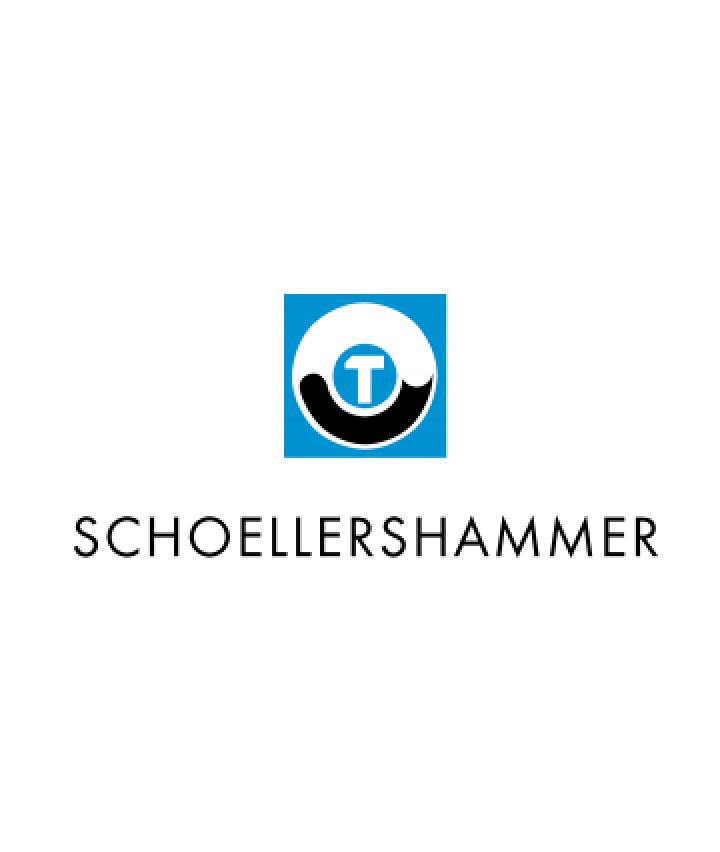 Schoellerschammer Case Study Big
